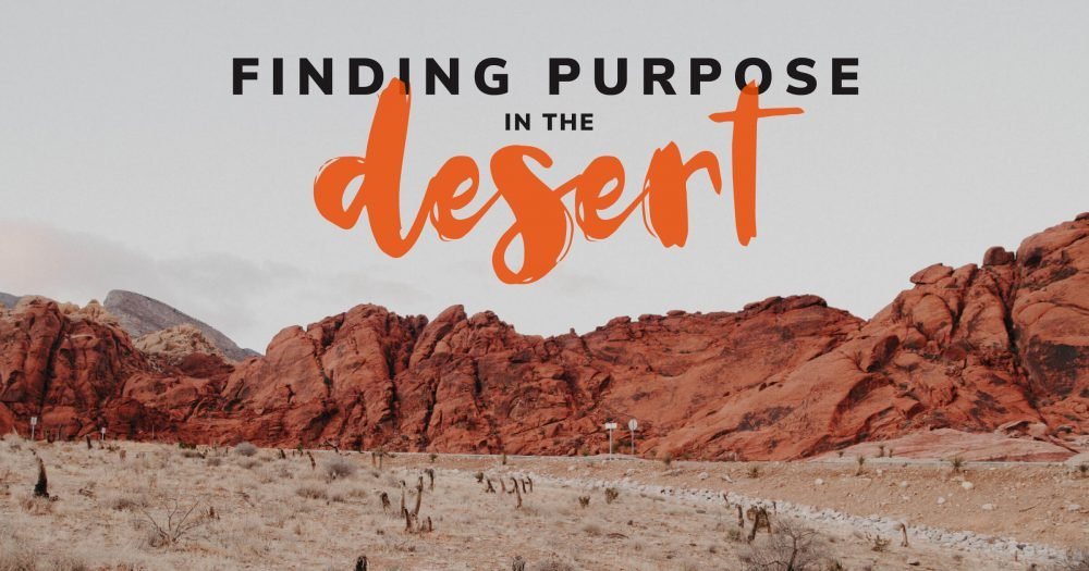 Finding-Purpose-in-the-Desert-New