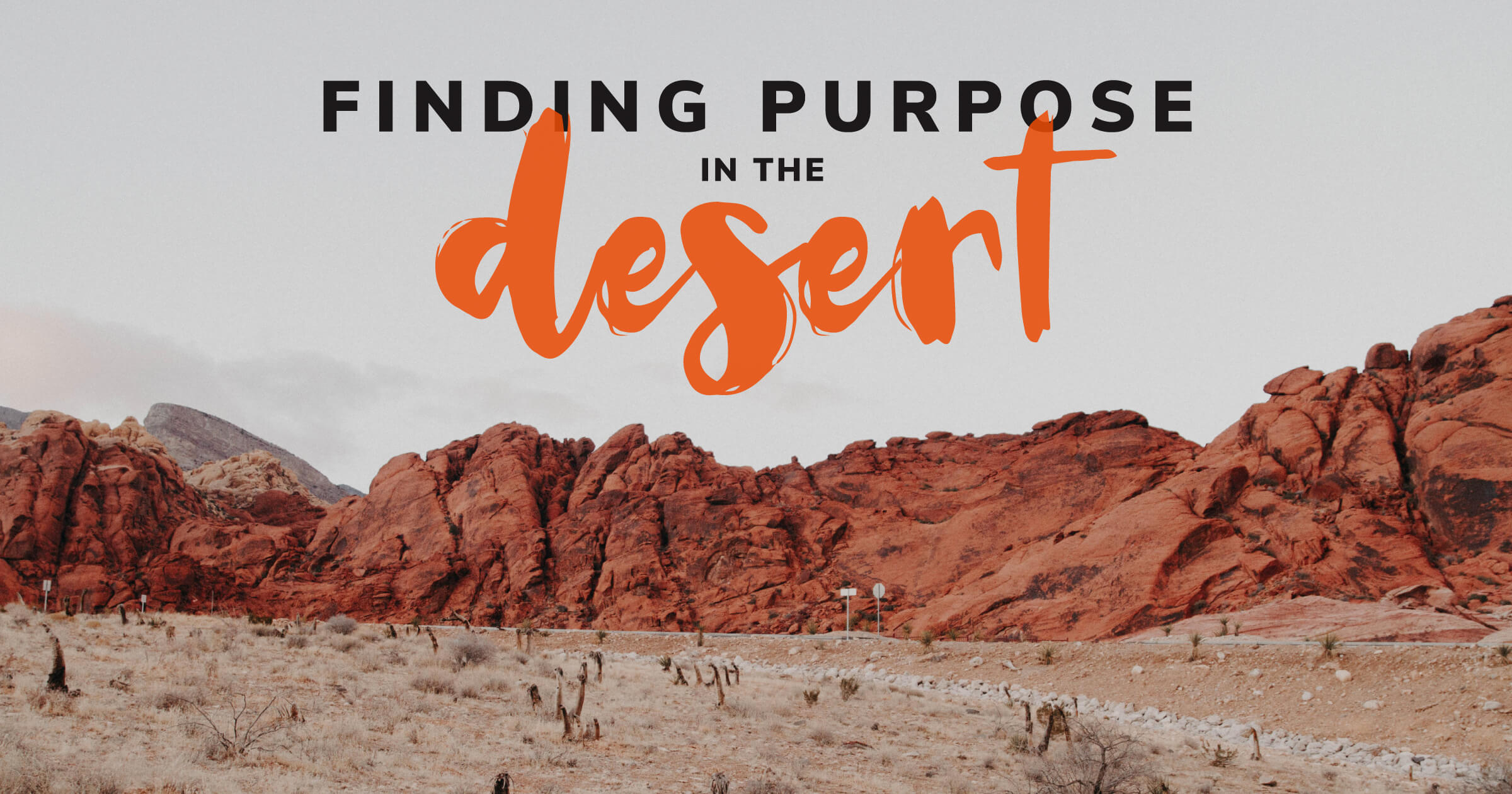 Finding-Purpose-in-the-Desert