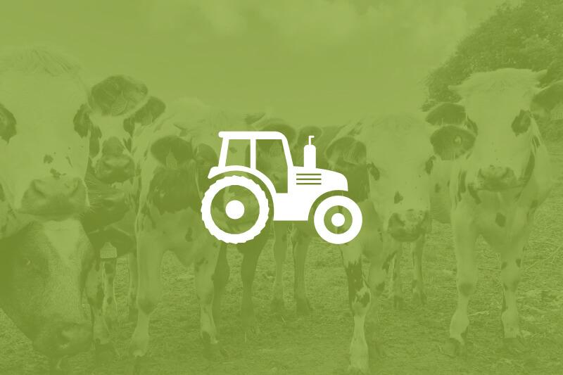 farm-flyer-thumbnail